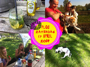 Vorig jaar zat ik op de camping in Almere!