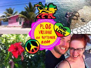 Vorig jaar had ik het allemaal iets beter voor elkaar in Jamaica...